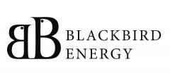 Black Bird Energy