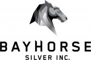 Bayhorse Silver