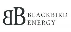 Blackbird Energy