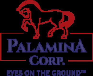 Palamina Corp.