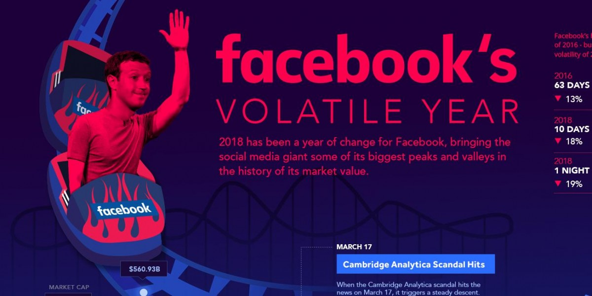 Photo: Facebook's Volatile Year in One Giant Chart